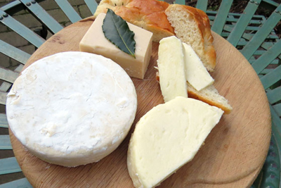 Vegan Cheese making - vegetarian vegan course
